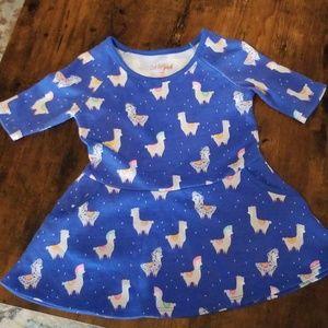 Alpaca blue dress.